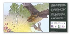 Bat-Postcard